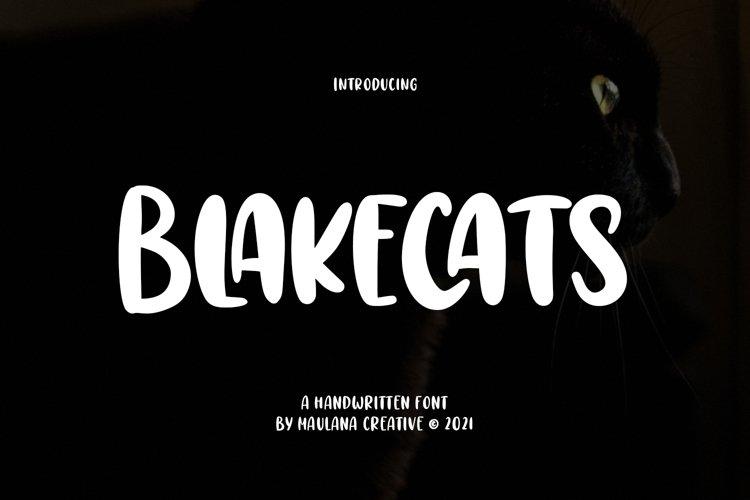 Blakecats Handwritten Font example image 1