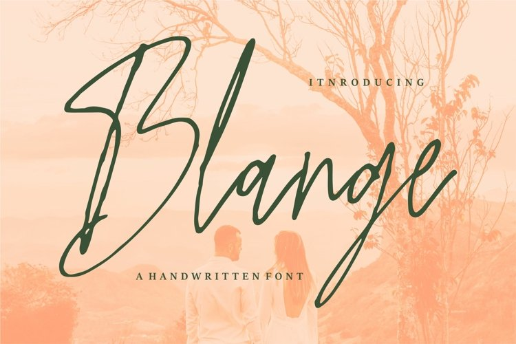 Blange - A Handwritten Font example image 1