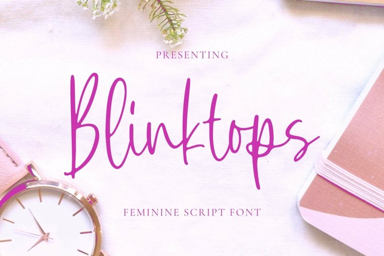 Web Font Blinktops - Script Font example image 1