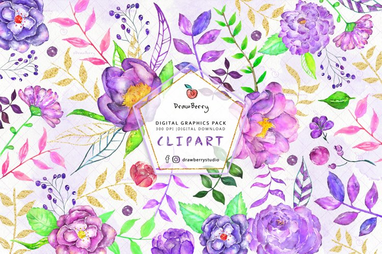 Watercolor Purple Flowers Clipart  Drawberry CP062 example image 1