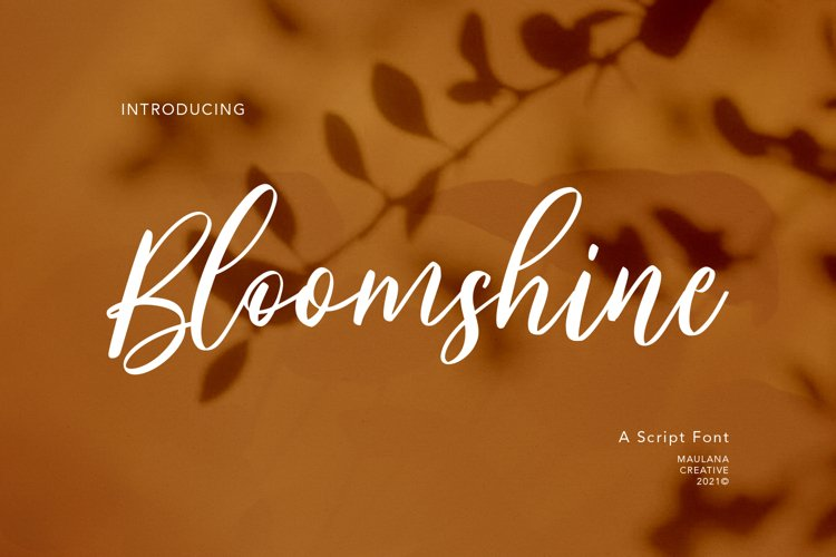 Bloomshine Script Font example image 1