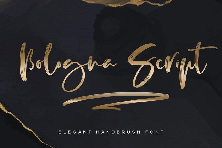 Bologna Script example image 1