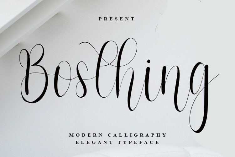 Bosthing - Modern Calligraphy Font example image 1