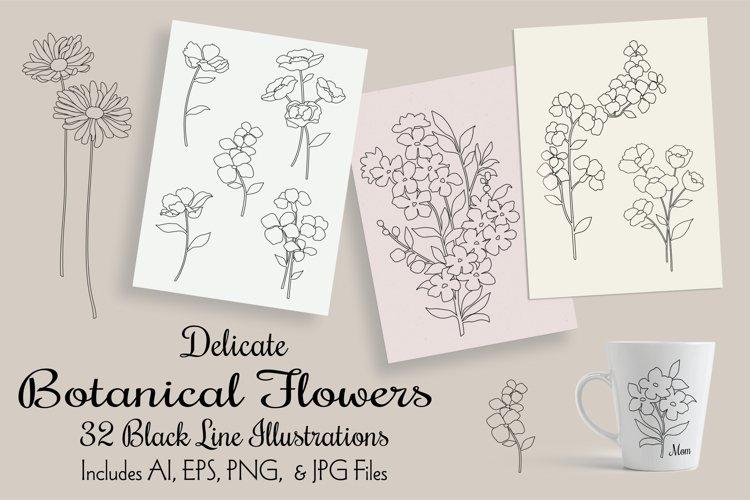 Botanical Flower Illustrations
