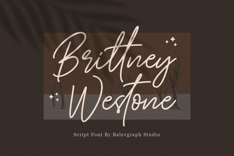 Brittney Westone - Script Font example image 1