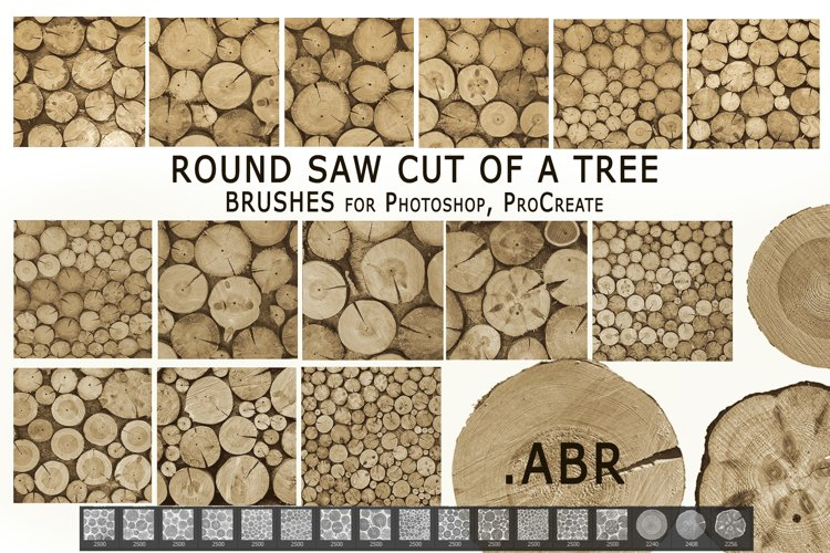 Round saw cut of a tree. Brushes .ABR
