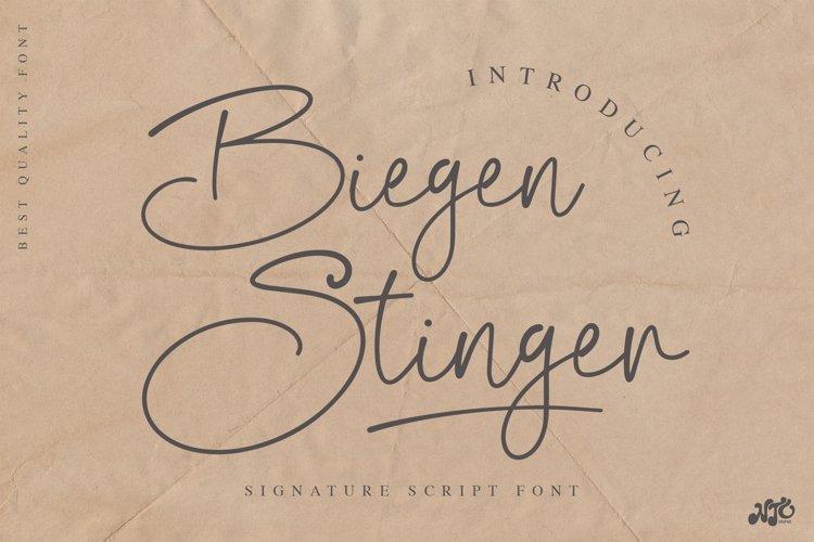 Biegen Stinger - Script Font example image 1