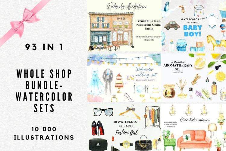 Whole Shop Watercolor Bundle, Watercolor Clipart Set