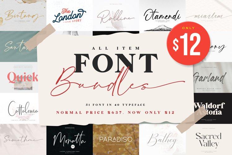 All Item Font Bundles example image 1