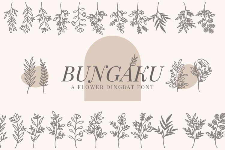 Bungaku - Dingbat Font example image 1