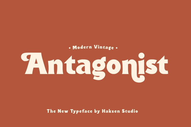 Antagonist Casual Bold Serif example image 1