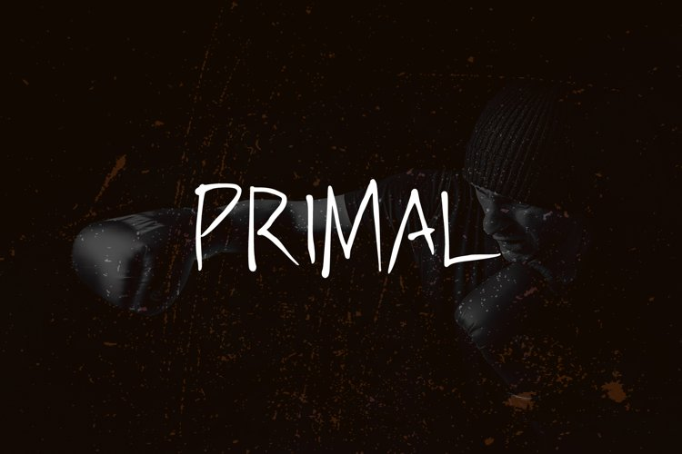 PRIMAL - handwritten brush font example image 1