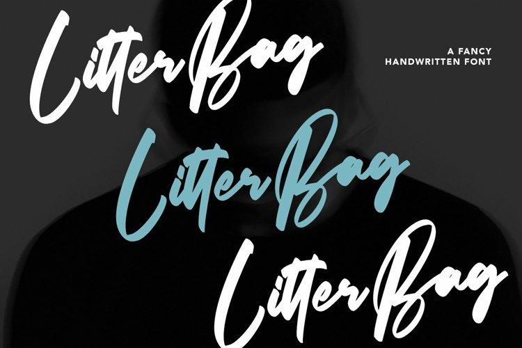 Web Font Litterbag - Fancy Script Font example image 1