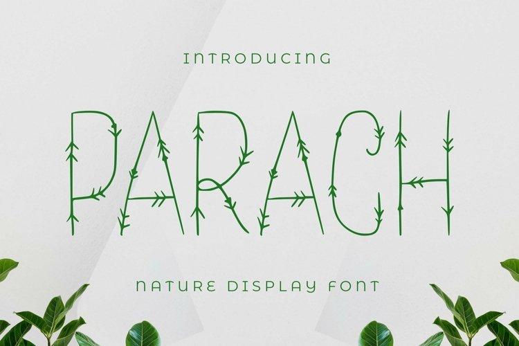 Web Font Parach Font example image 1