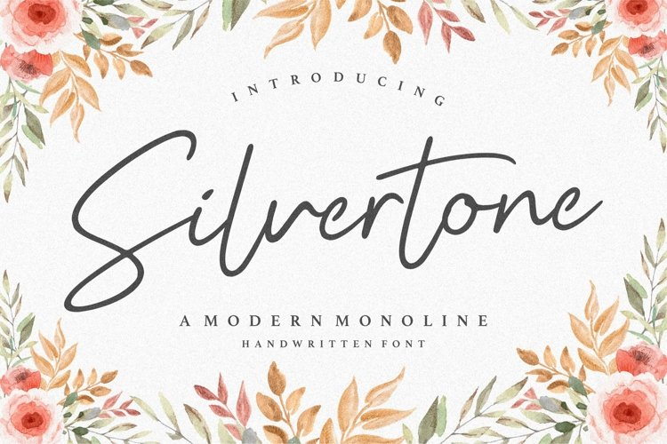 Silvertone Modern Monoline Handwritten Font example image 1