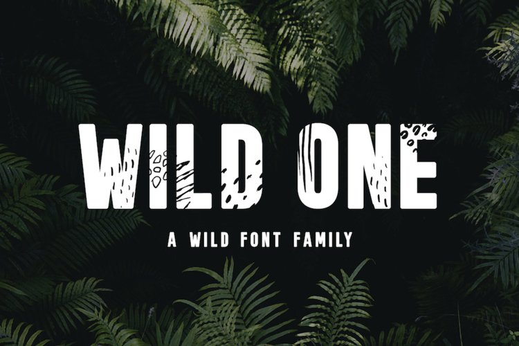 Wild One - A Wild Font Family example image 1