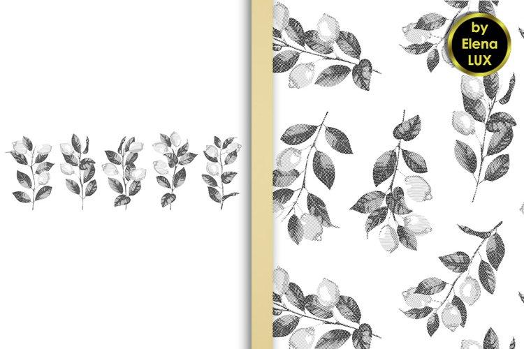 Lemon hatching set and seamless pattern