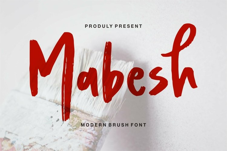 Web Font Mabesh - Modern Brush Script Font example image 1
