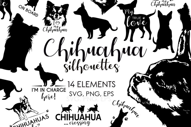 Chihuahua Svg, Dog Silhouettes Svg, Dog Breeds Svg example image 1