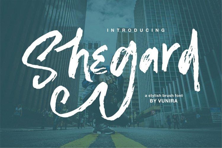 Shegard | A Stylish Brush Font example image 1