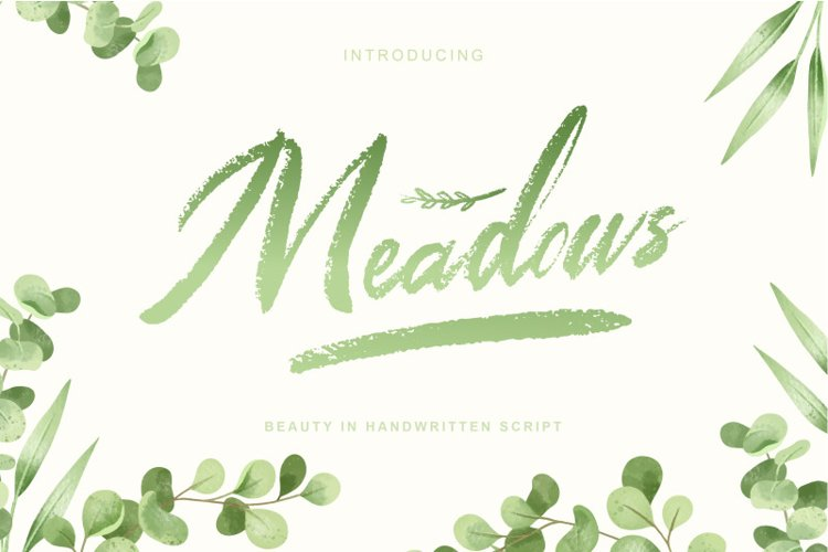Meadows   Textured brush script font example image 1