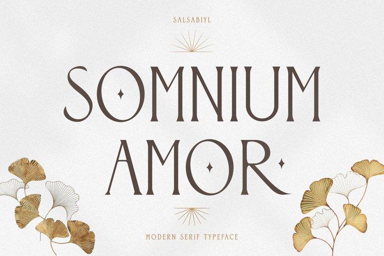Somnium Amor example image 1