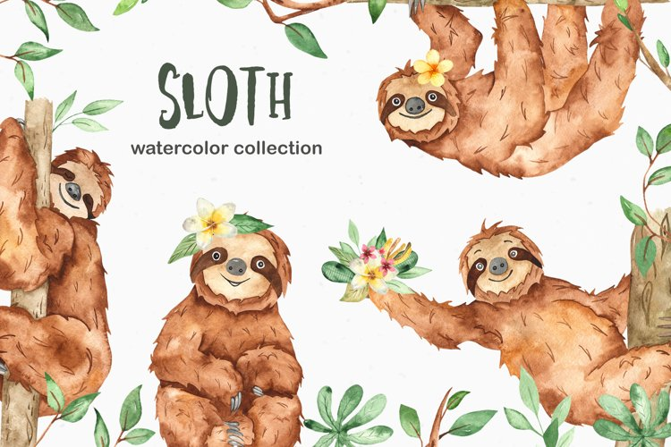 Watercolor sloth. Clipart, seamless patterns and cards