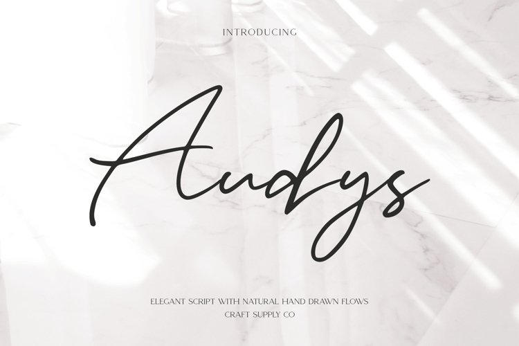 Audys - Elegant Script Font example image 1