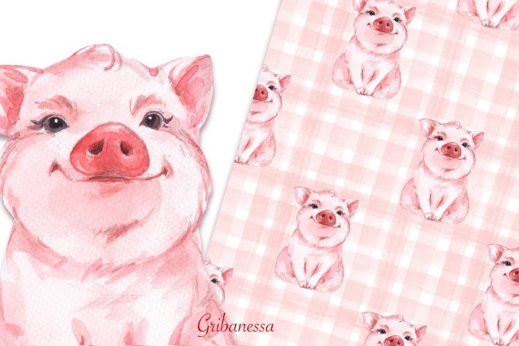 Pig and pattern. Watercolor