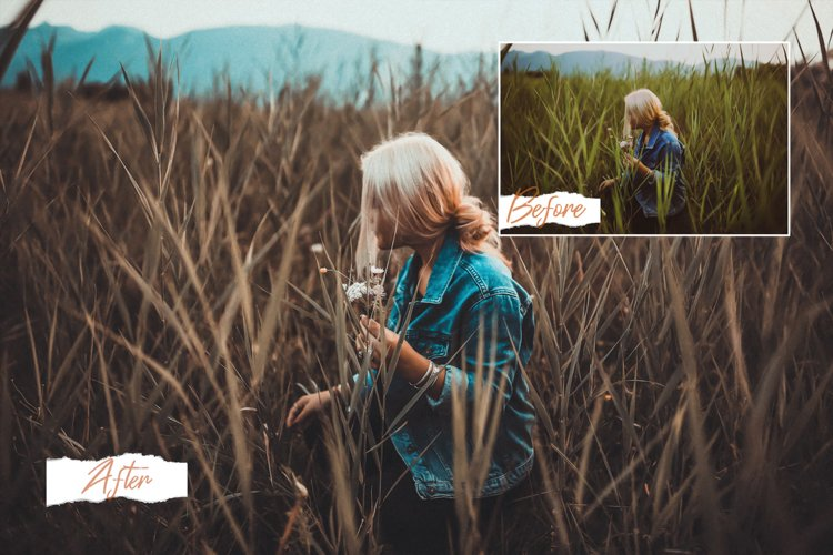 14 Moody Photoshop Actions, ACR and LUT Presets example image 1