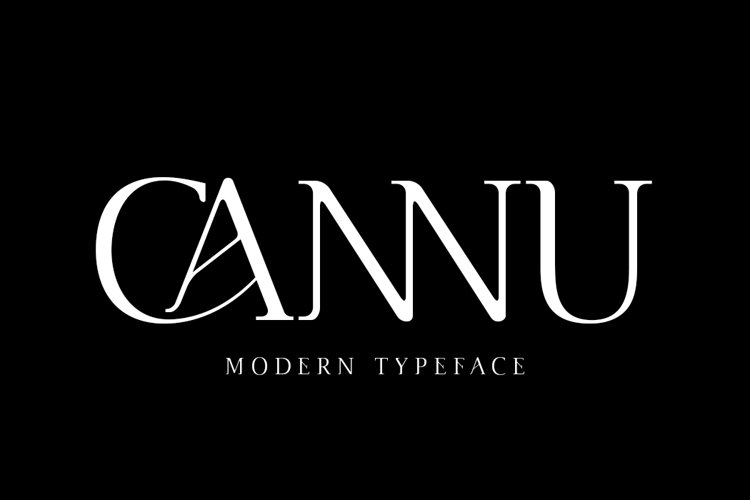 Cannu - Modern Typeface example image 1