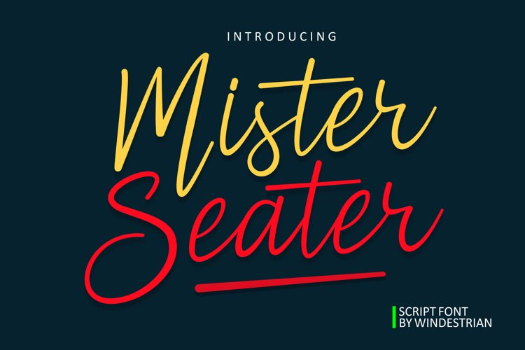 Mister Seater | Script Font example image 1