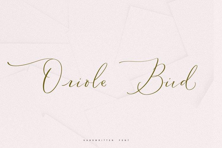 Oriole Bird handwritten font example image 1