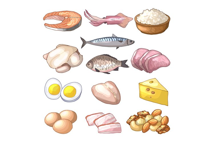 Useful products. Illustrations in cartoon style. Vector coll example image 1