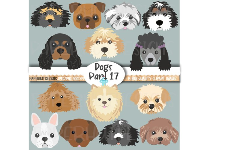 Dog Faces Clipart Dog Face Illustrations