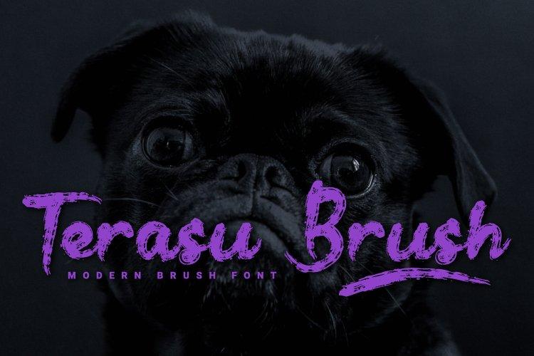 Terasu Brush example image 1