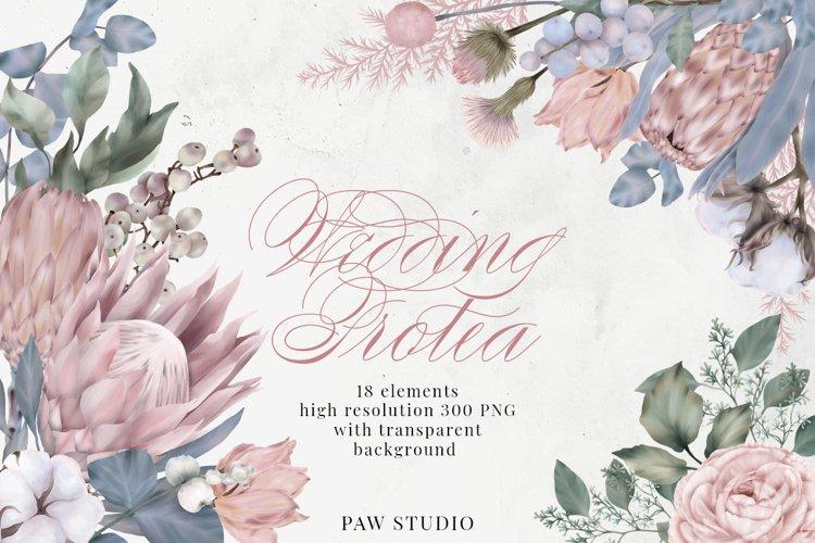 Wedding Protea Flowers Leaves Rose Cotton Eucalyptus Clipart