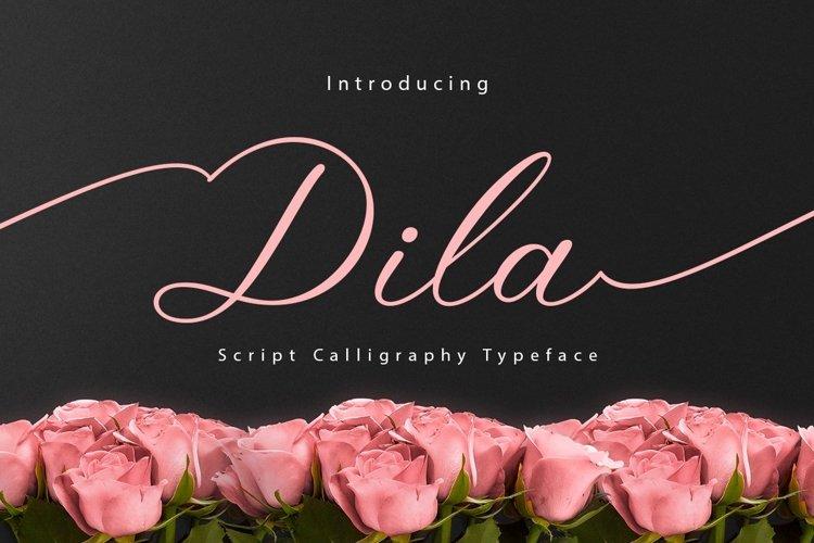 Web Font Dila Script example image 1