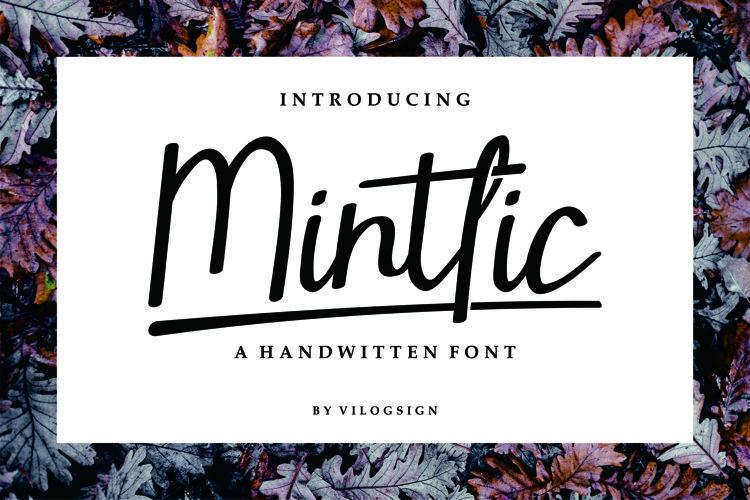 Mintlic Script Font example image 1