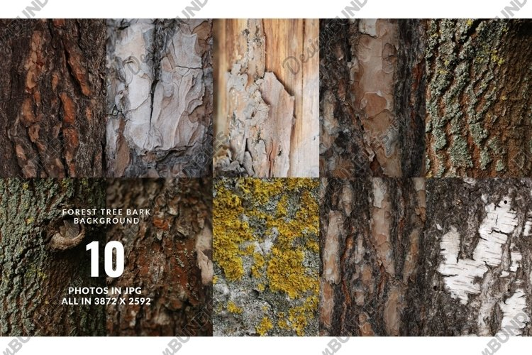 Set of forest backdrops - tree bark backgrounds Vol4 example image 1