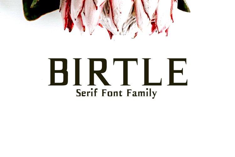 Birtle Serif Font Family example image 1