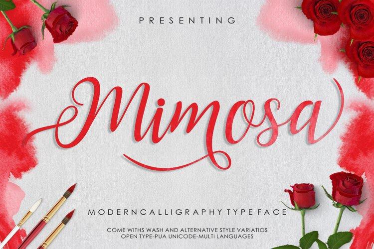 Mimosa Script example image 1