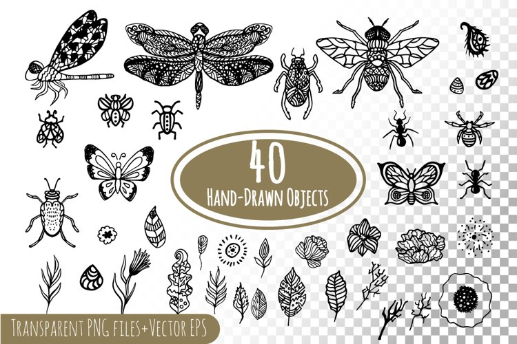 Hand-drawn ink insects and patterns example image 1