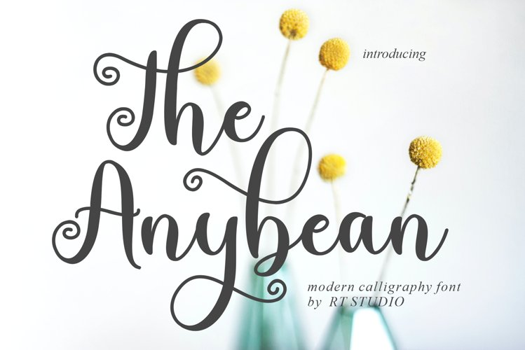 The Anybean example image 1
