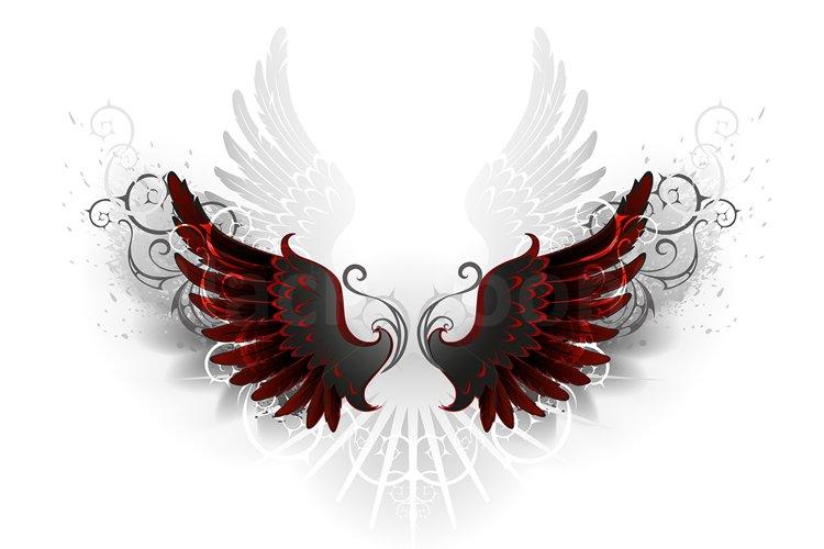 Black Wings example image 1