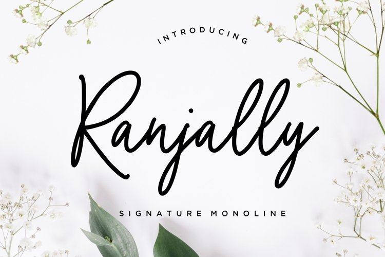 Ranjally Monoline Signature example image 1