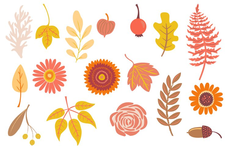 Autumn Owls and Fall Elements, Woodland Animals Clipart example 2