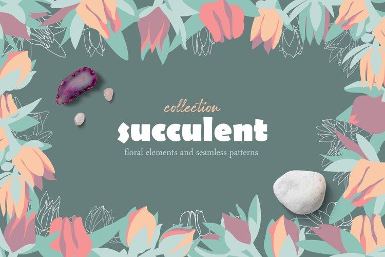 succulent- elements & patterns collection
