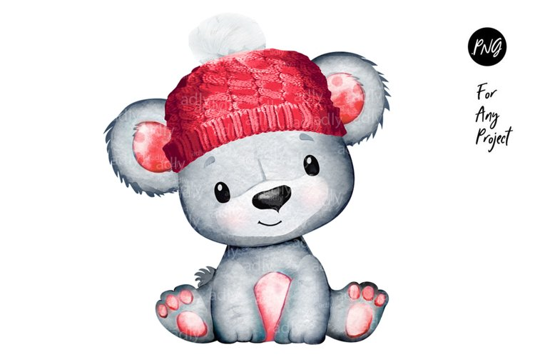 Red Hat Baby Boy Bear for Winter Themes, PNG, sublimation