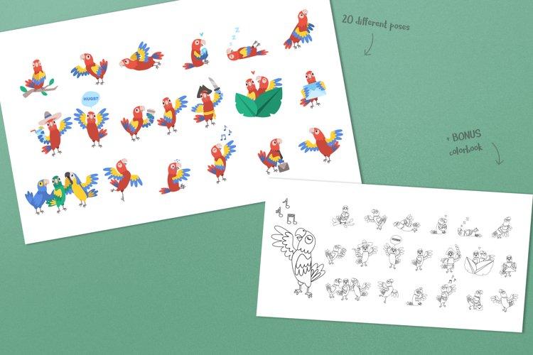 Parrot Bundle example 3